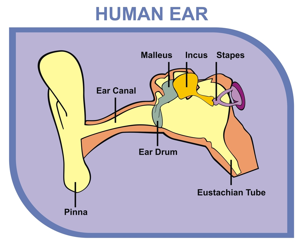 The Problems Associated With Hearing Loss