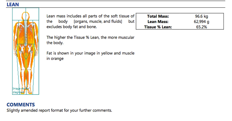 lean body composition
